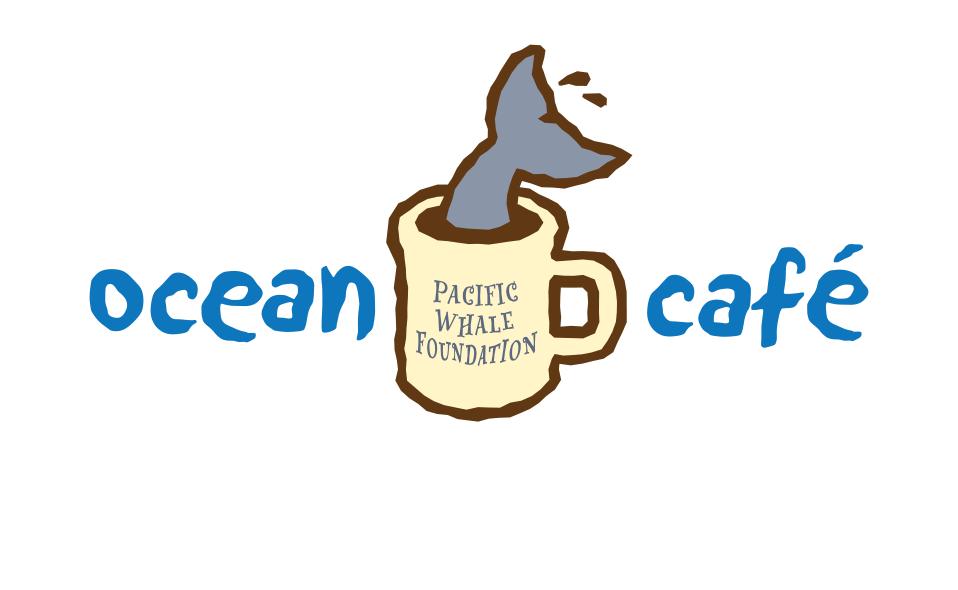 Logo design for Pacific Whale Foundation's former coffee shop in Hawaii.